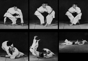 tani otoshi sequence